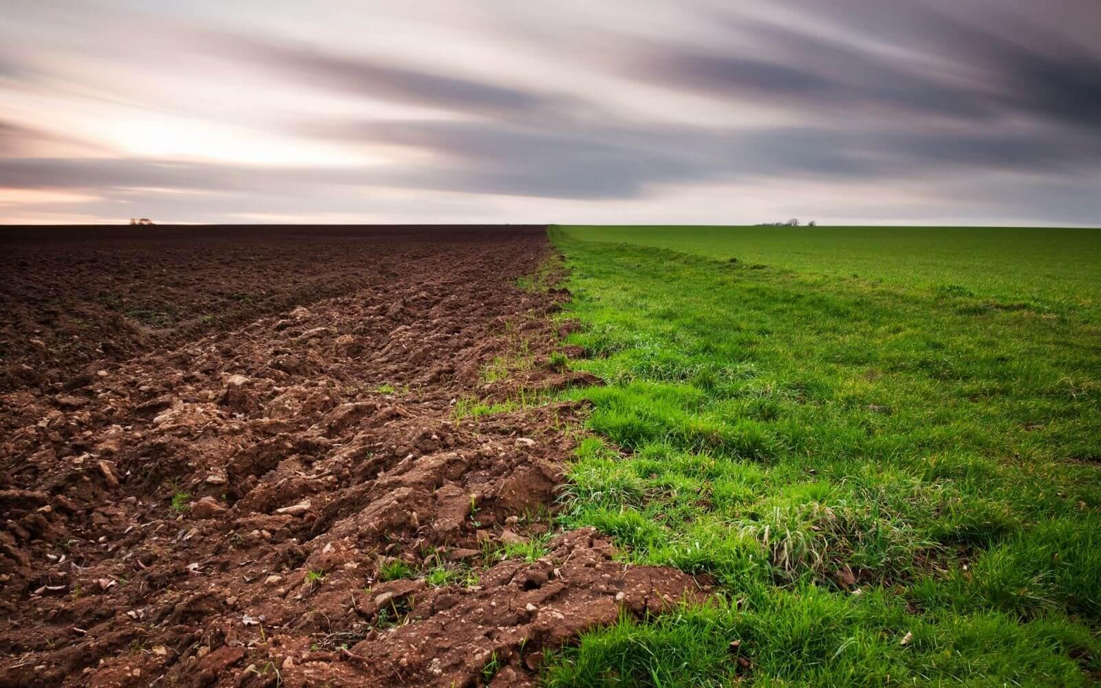 К чему снится земля во сне для женщины. Копать землю - сонник